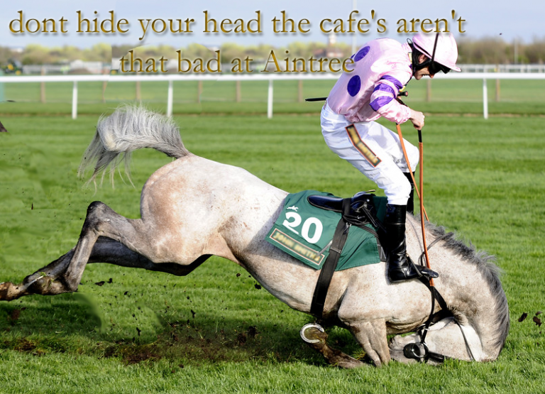 High Expectations of Aintree and the Elite BSJA show 2016…for the cafe